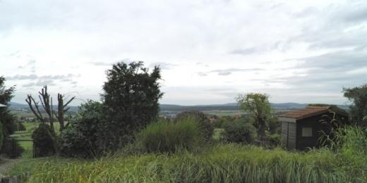 2010-09-14a.jpg