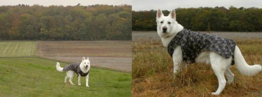 2010-10-18a.jpg