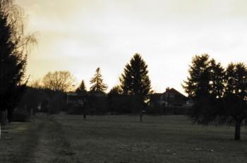 2012-01-27c.jpeg