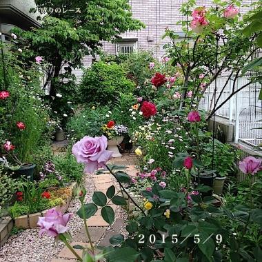 IMG_9194-2.jpg