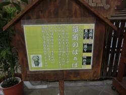 2015-03-18 犬山城・大須 025 (640x480)