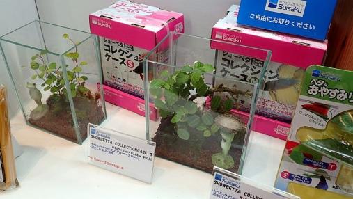 ジャパンペットフェア2015 04-02 (164)
