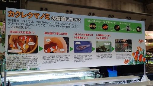 ジャパンペットフェア2015 04-02 (108)