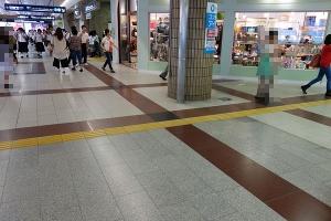 D9049801dsc.jpg