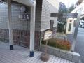 hanaougi01.jpg