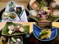 hanaougi05.jpg