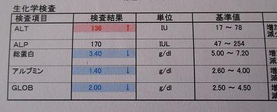 2015-01-04-06.jpg