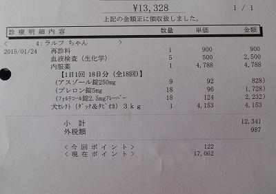 2015-01-24-09.jpg