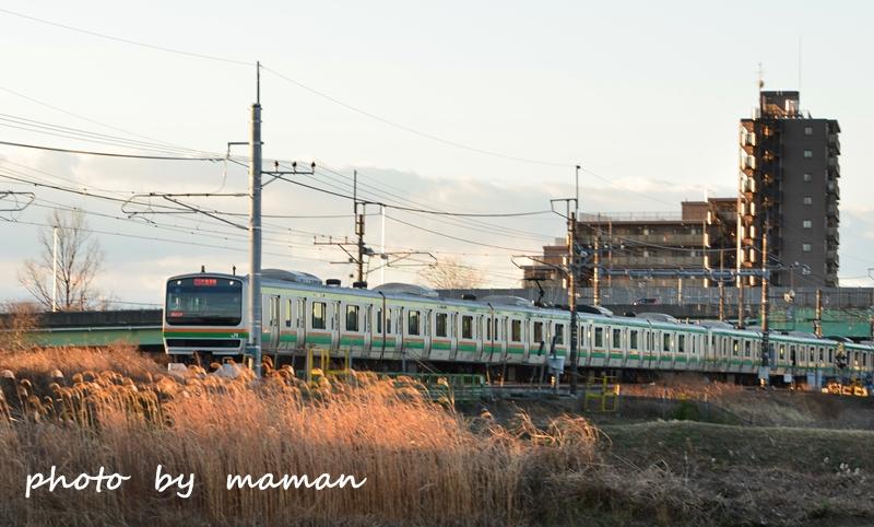 CAA_0391.jpg