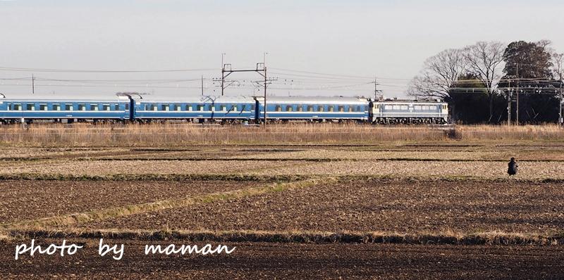 P3040257.jpg