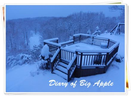 ジャグジーも雪に埋もれて