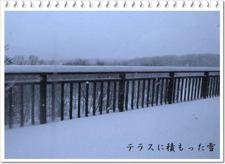 2/2の雪