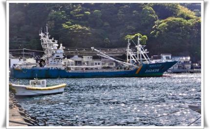 遠洋漁業船