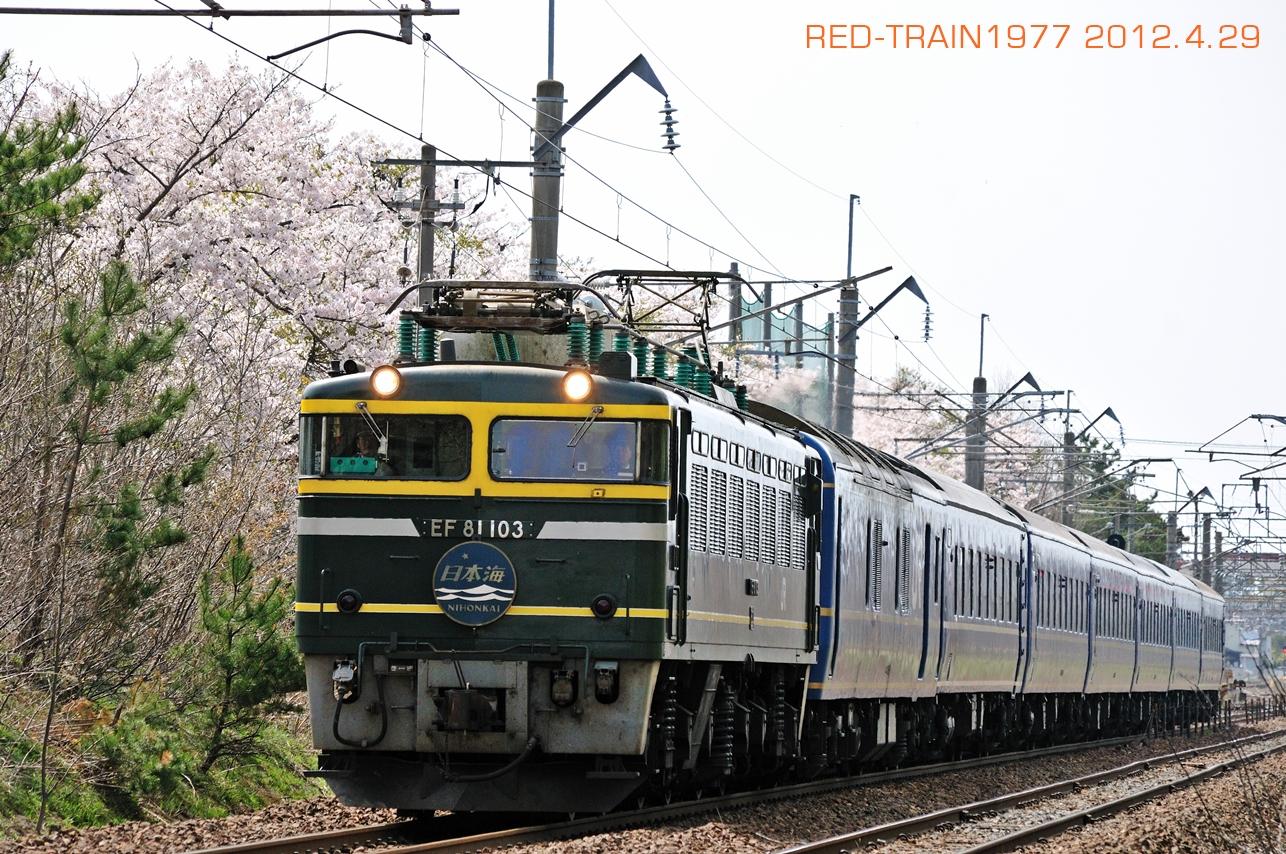 DSC_9485.jpg