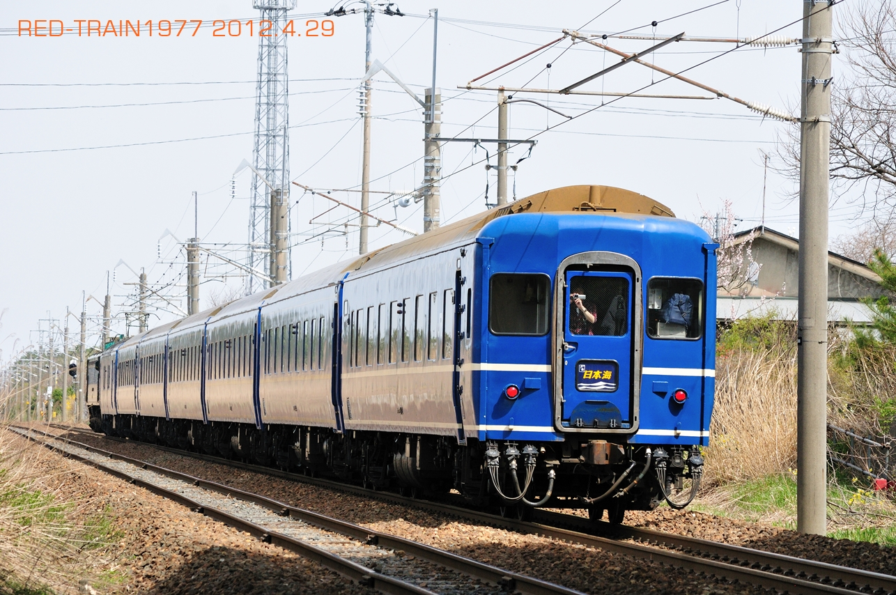 DSC_9487.jpg