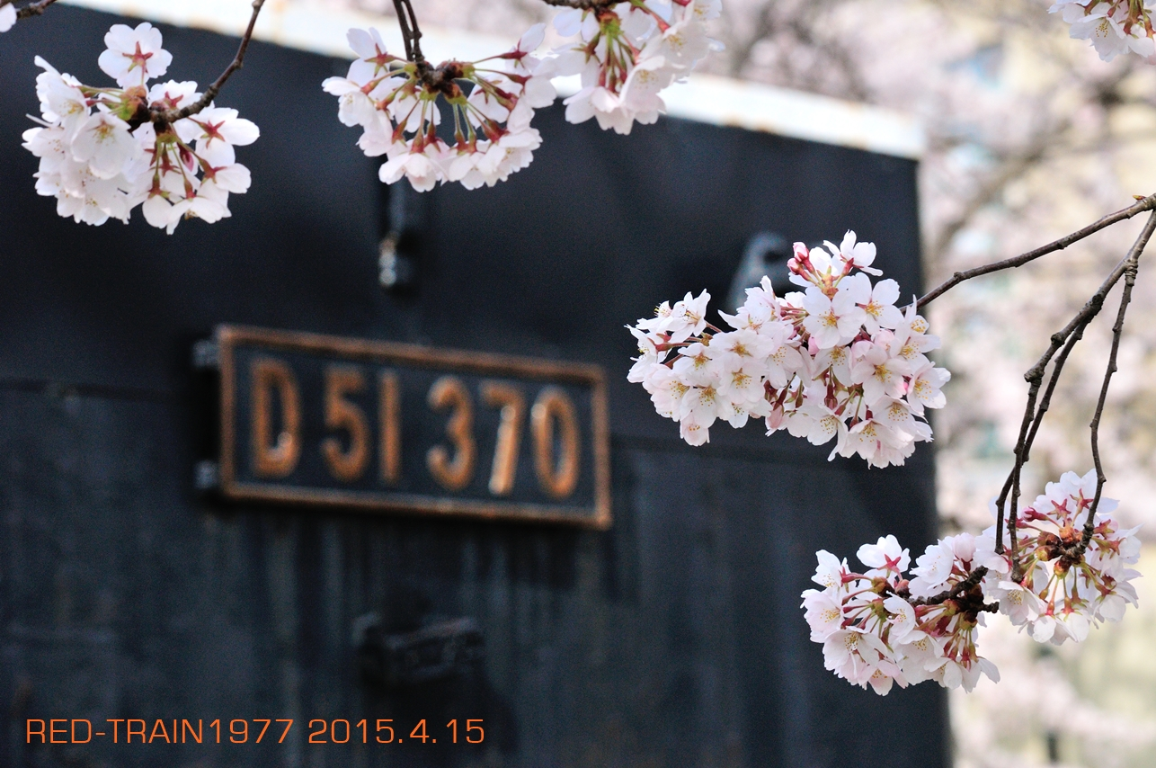 aDSC_2670.jpg