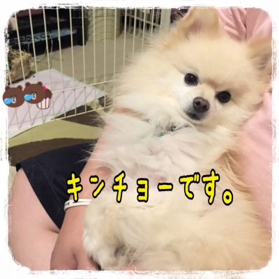 2015062210524345d.jpg