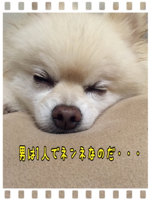 20150701204414c00.jpg