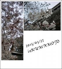 20150327.jpg