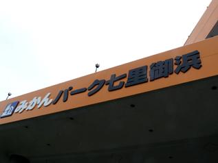 rie11229.jpg