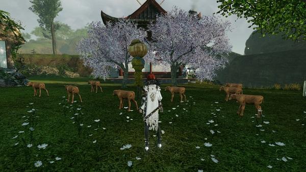 3月18日畑に桜