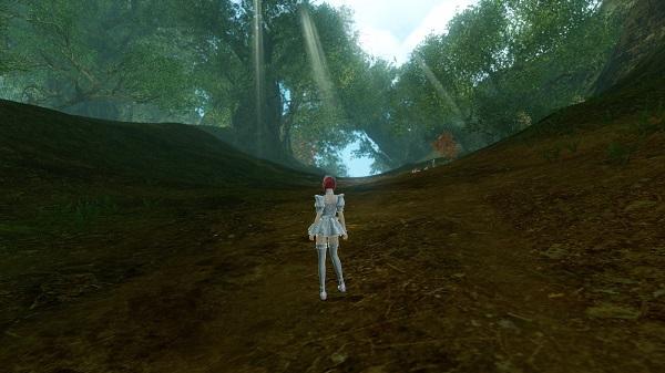 3月21日古代の森
