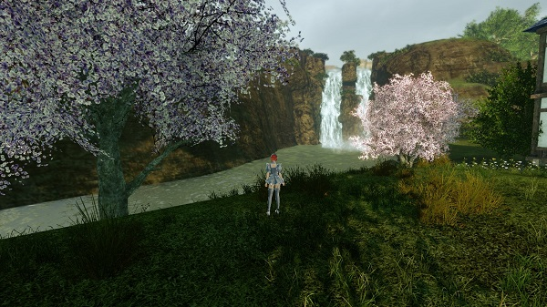 3月29日川沿いの桜が