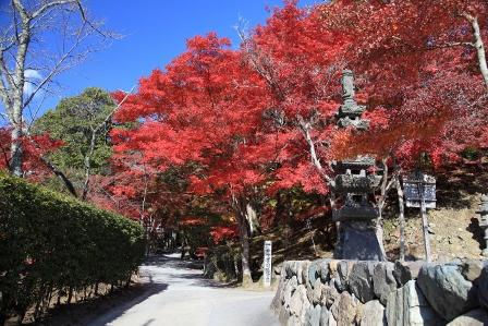 高槻神峯山寺3