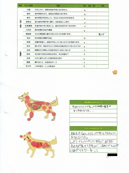 動物病院(03212015)16