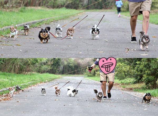 みんなで走るー