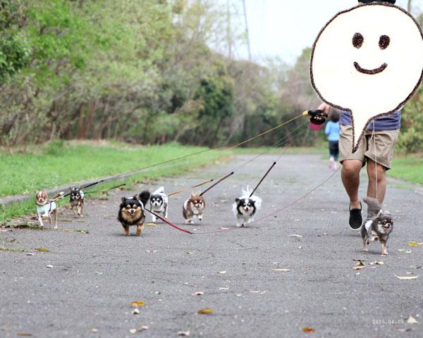 走る走るー