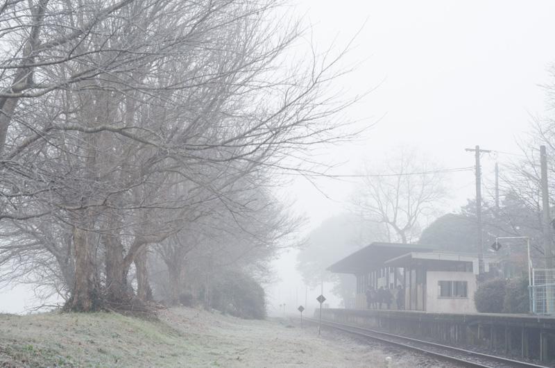 2014-12-27-2.jpg