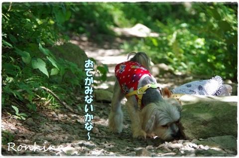 幕山公園⑤