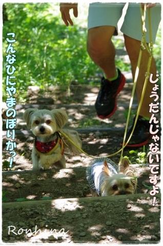 幕山公園②