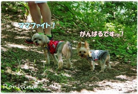幕山公園⑨