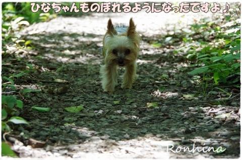 幕山公園⑬