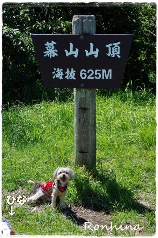 幕山公園⑪