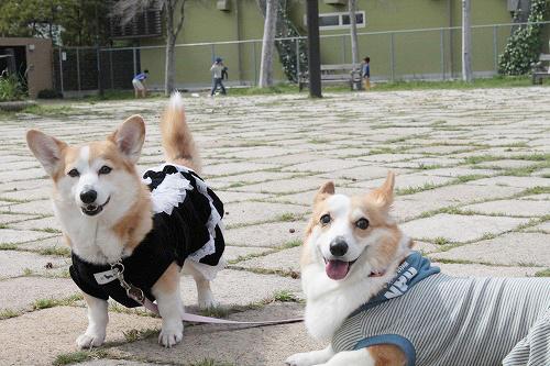 まりちゃん&らんちゃん