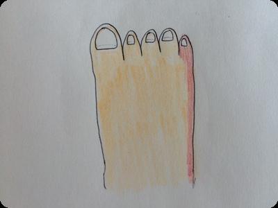 おかーの足