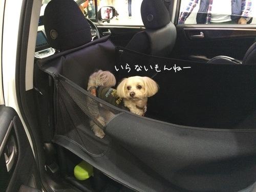 車用ケージ