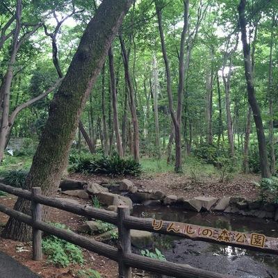 りんしの森公園