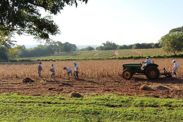 20150416大豆収穫の旅人達-11
