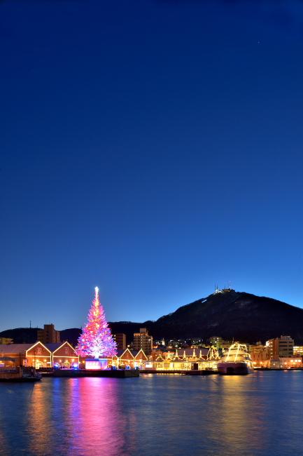 126. 函館夜景