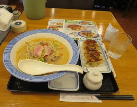 gyozanohi2.jpg
