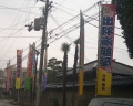 150315sumou1.jpg