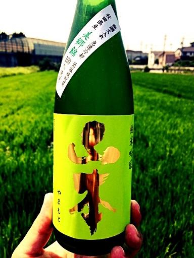 山本 緑ラベル 美郷錦 純米吟醸