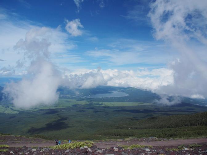 富士の樹海に雲の影