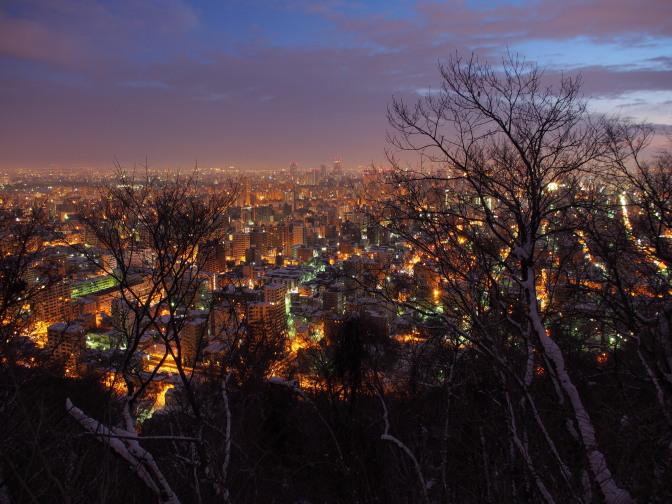 円山中腹から札幌の夜景