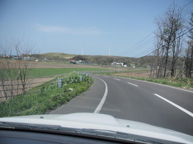 園内の道路も閑散…