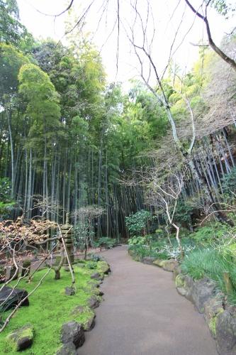 鎌倉小旅行5